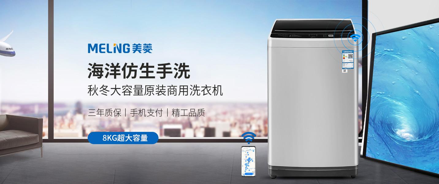 品牌乐鱼全站登录洗衣机